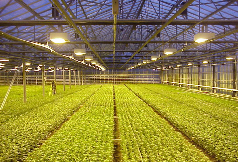 Illuminazione a led serre agricole ecopro energia acqua